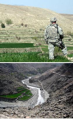 Afganistan Farming