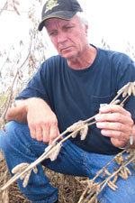 Missouri farmer Doug Wiesehan checks the progress of his soybean crop. (Photo by Tom Steever)