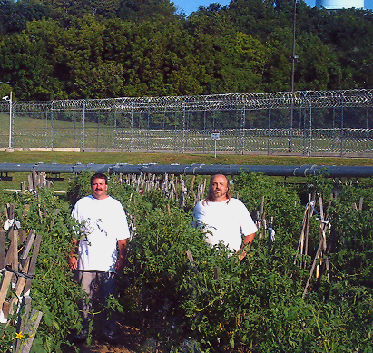 Prisoners give back to society through fresh produce and