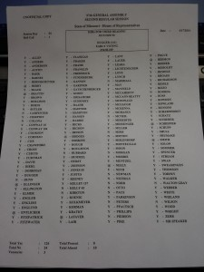 How they voted - Early Voting HJR 04-17-2014