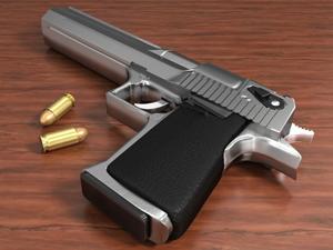 stock handgun