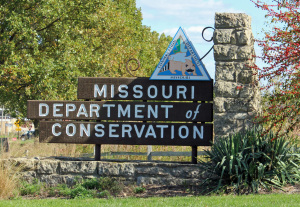 Missouri's feral hog hunting ban on public land takes effect