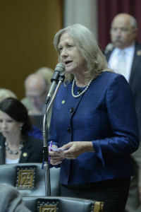 Representative Jeanie Lauer (photo courtesy; Tim Bommel, Missouri House Communications)