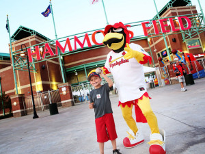 Check out a Springfield Cardinals game this summer (photo/Springfield CVB)