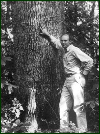 Leo Drey stands next to a tree.  (Photo Courtesy of the L-A-D Foundation)