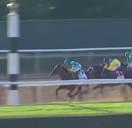 American Pharoah leads the way at the 2015 Belmont Stakes